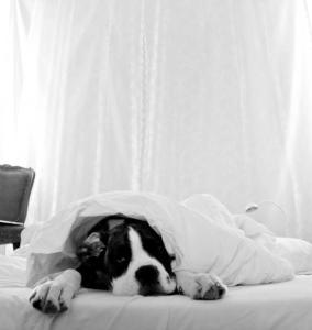 higiena snu Materace-Dla-Ciebie